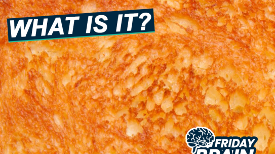 Close Up Challenge – What Could This Be?